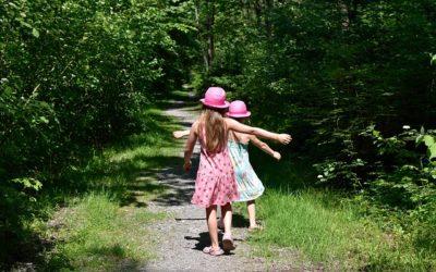 Freude: Das Leben in Verbindung mit der Natur gestalten und ihre Sprache verstehen